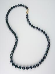 Night Jewels of the Sea Necklace - Black Akoya Saltwater Pearls
